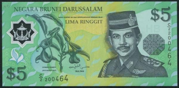 1996, Plastik - (Sie sehen ein Musterbild, nicht die angebotene Banknote)