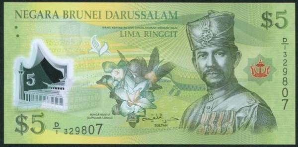 2011, Plastik - (Sie sehen ein Musterbild, nicht die angebotene Banknote)